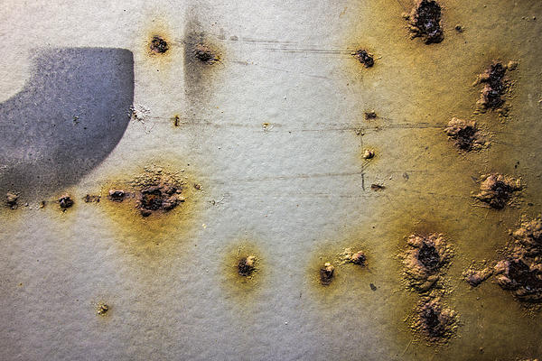 Waking Rust Print by David Stone