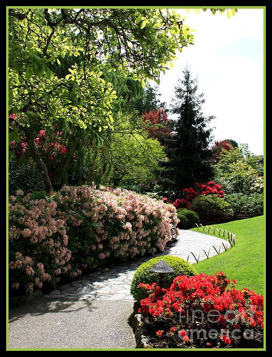 Walk through spring garden by carol groenen - When you walk through the garden ...