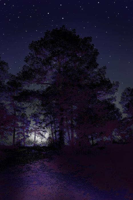 Walking At Night Print by Nina Fosdick