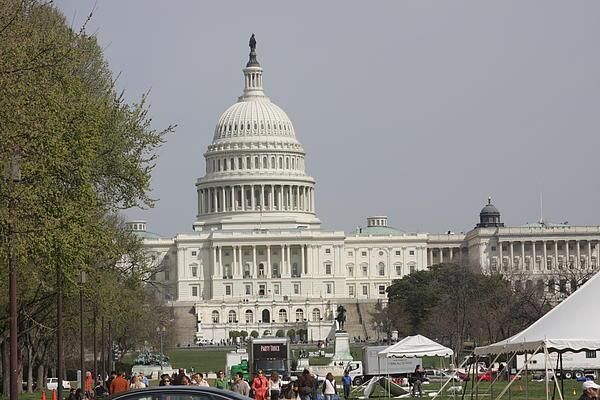 Washington Dc - Us Capitol - 01134 Print by DC Photographer