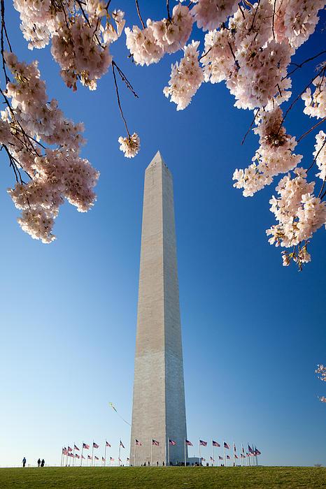 Washington Monument Print by Inge Johnsson