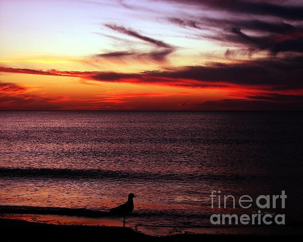 Watching The Sunset Print by Doris Wood