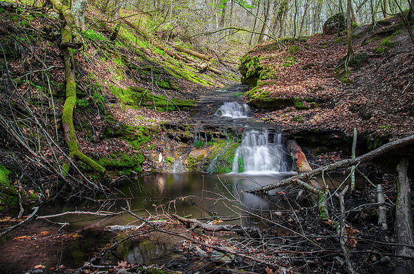 Waterfall At Parfrey's Glen Print by Jonah  Anderson