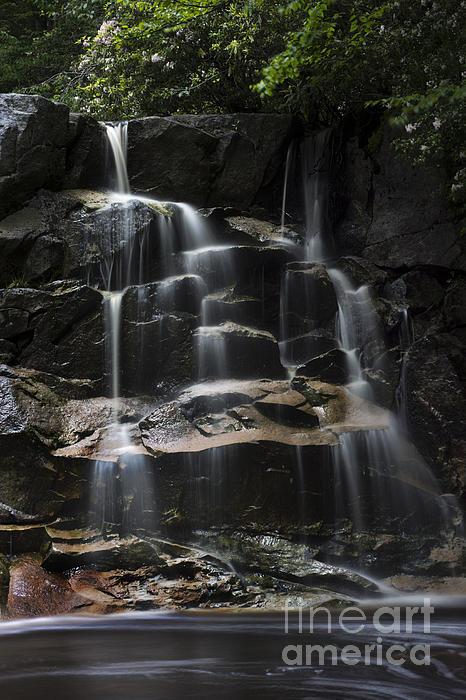 Waterfall On Small Stream Print by Dan Friend