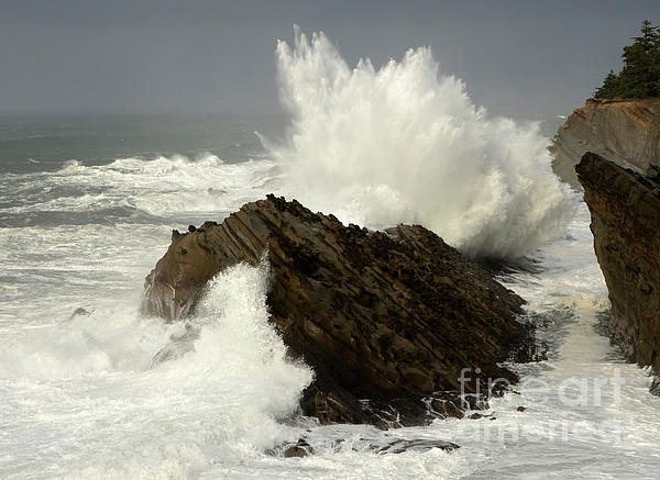 Wave At Shore Acres Print by Bob Christopher