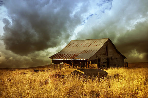 Weathered Barn  Stormy Sky Print by Ann Powell