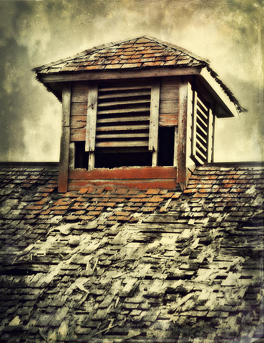 Julie Hamilton - Weathered Cupola