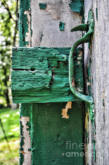 Weathered Green Paint Print by Paul Ward