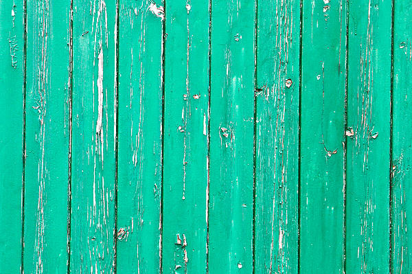 Weathered Green Wood Print by Tom Gowanlock