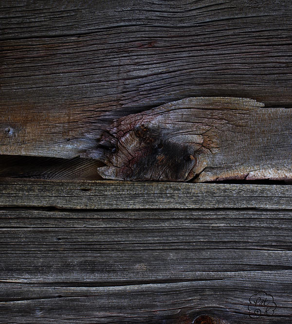Weathered Wood - Dusk Print by Patricia Kay