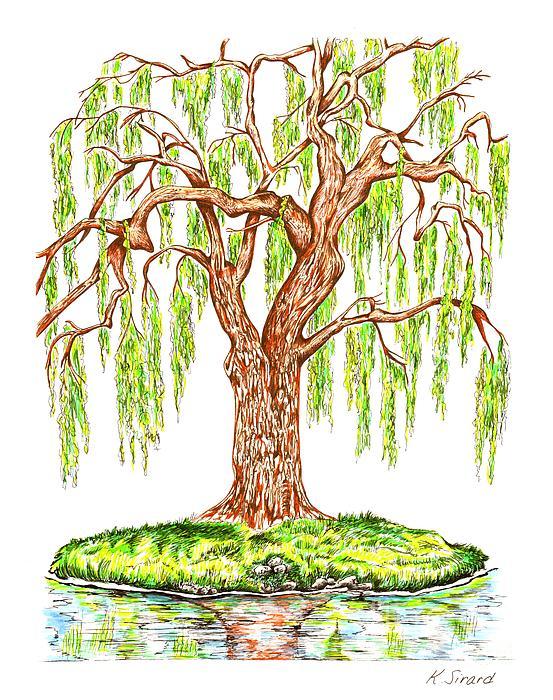 Weeping Willow Print by Karen Sirard