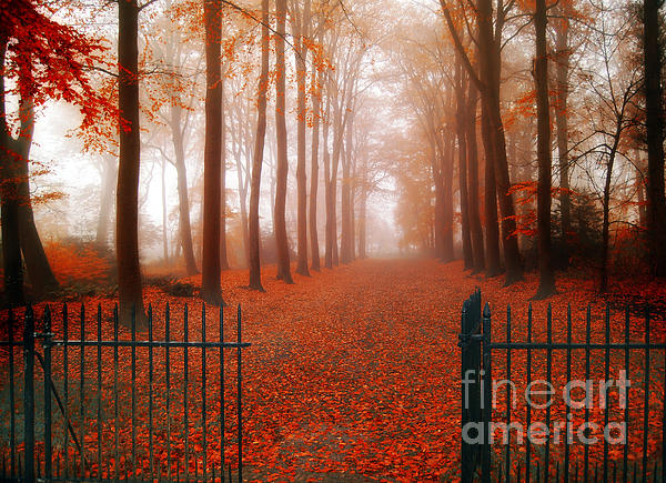 Welcome Print by Photodream Art
