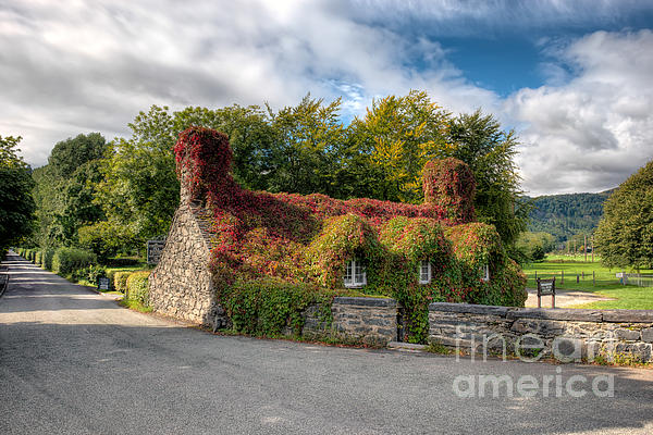 Welsh Cottage Print by Adrian Evans