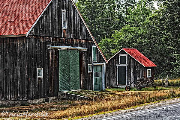 West Side Road Print by Tricia Marchlik