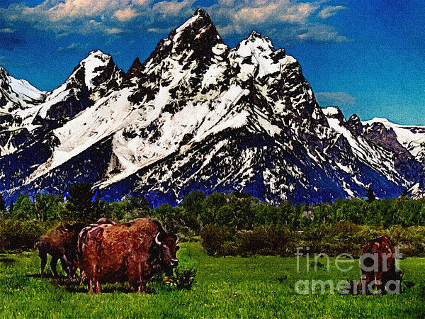 Where The Buffalo Roam Print by  Bob and Nadine Johnston