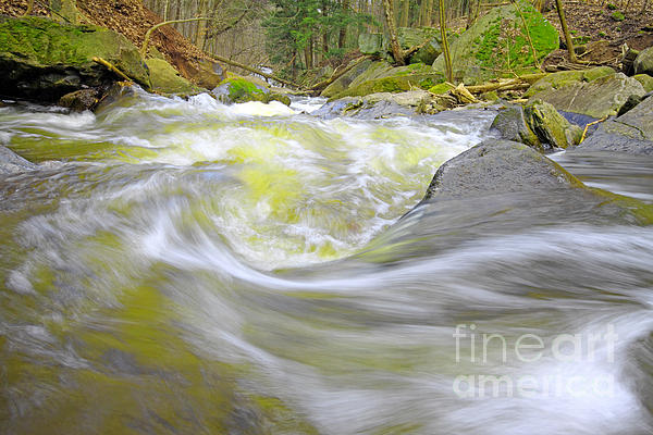 Whirlpool In Forest Print by Charline Xia