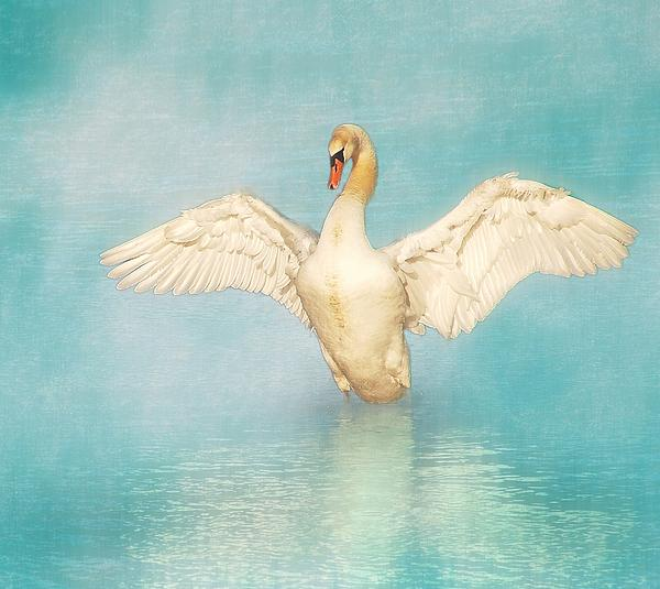White Angel Print by Hannes Cmarits