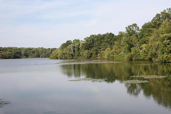 John Telfer - White Heron Lake Poconos PA II