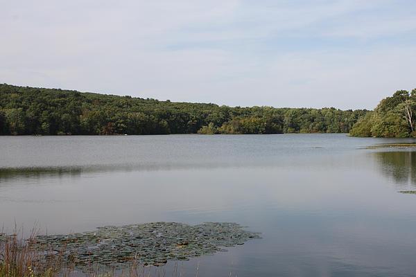 John Telfer - White Heron Lake Poconos PA