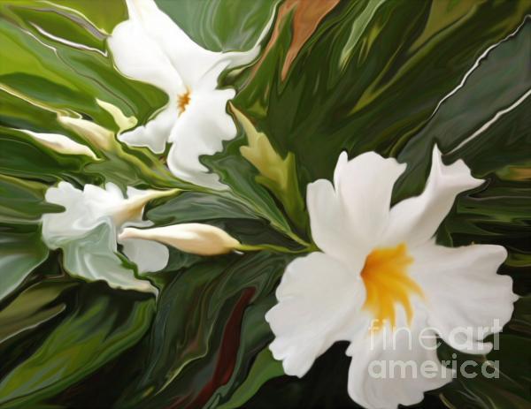 White Jasmine Print by Corey Ford