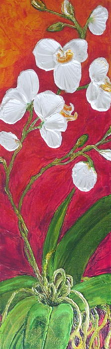 White Orchids On Red Print by Paris Wyatt Llanso