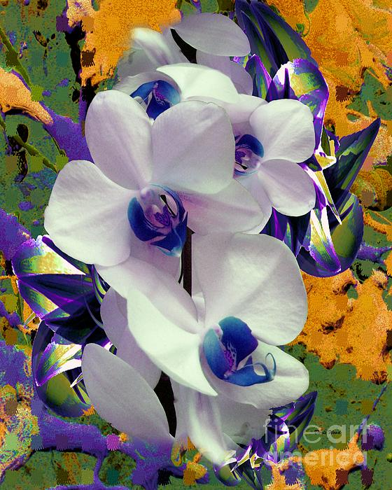 Doris Wood - White Orchids with a Touch of Purple