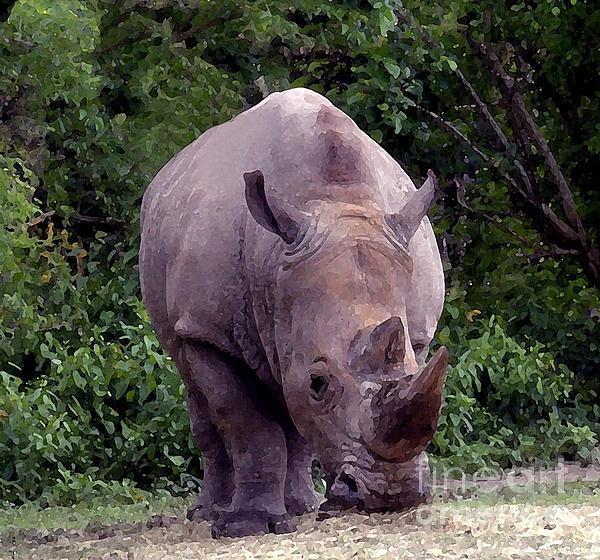 Joseph Baril - White Rhinoceros Water Coloring