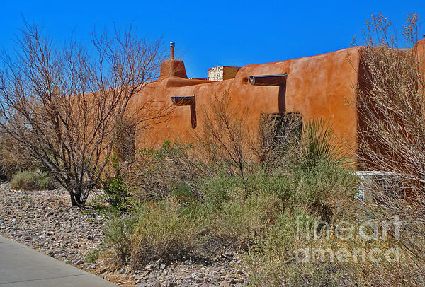 White Sands New Mexico Adobe 01 Print by Gregory Dyer
