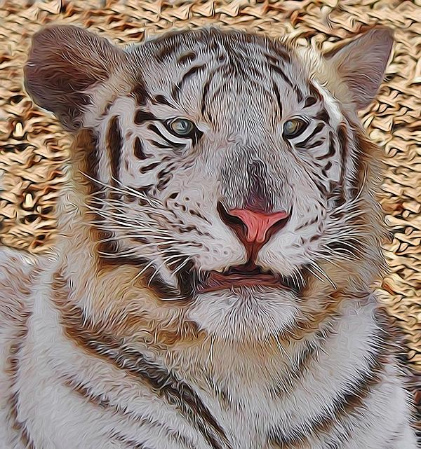 White Tiger Smile by Diane Alexander