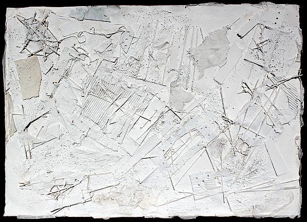 White Web Collage 6 Print by Hari Thomas