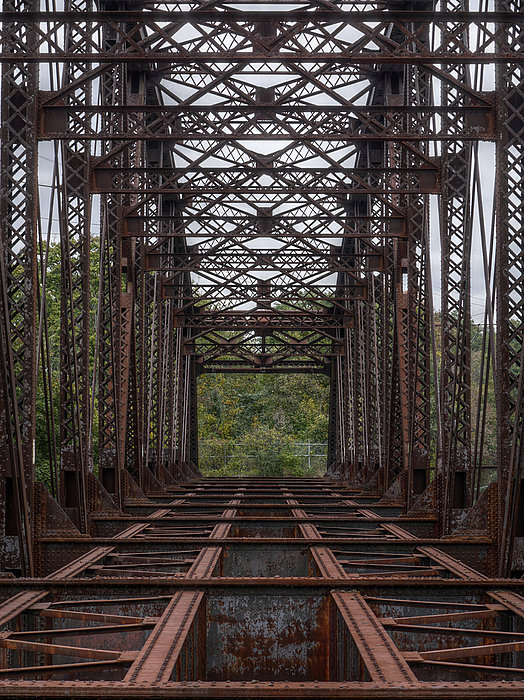Whitford Railway Truss Bridge Print by Richard Reeve