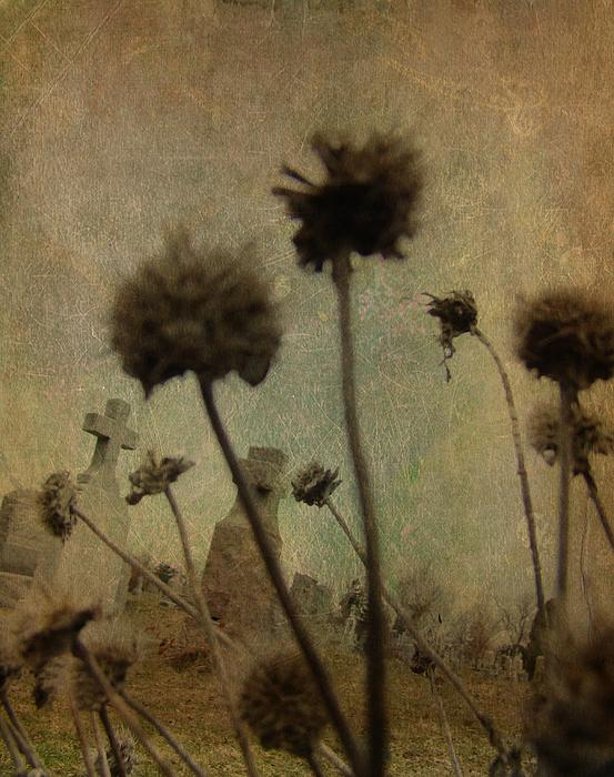 Gothicolors Donna Snyder - Wicked Weeds