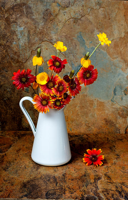 Wild Flowers In A White Pitcher On A Slate Background Print by Kim M Smith