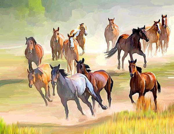 Ata Alishahi - Wild Horses