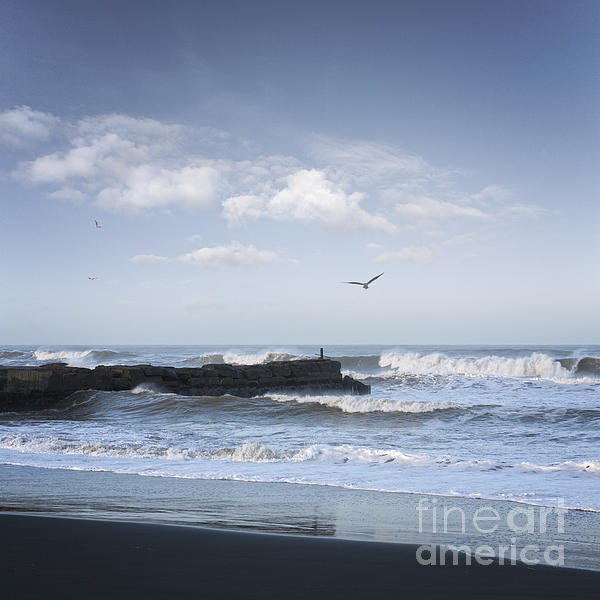 Wild Seascape With Old Jetty And Seagulls Overhead  Print by Colin and Linda McKie