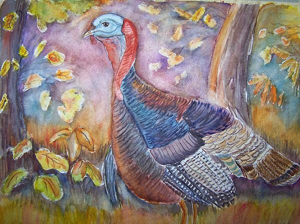 Wild Turkey In The Brush Print by Belinda Lawson