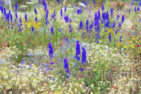 Wildflower Watercolour Print by Tim Gainey