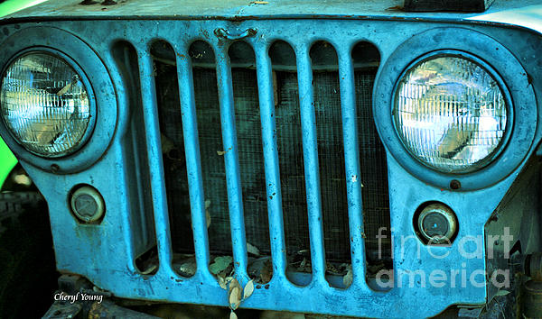 Willys Eyes Print by Cheryl Young