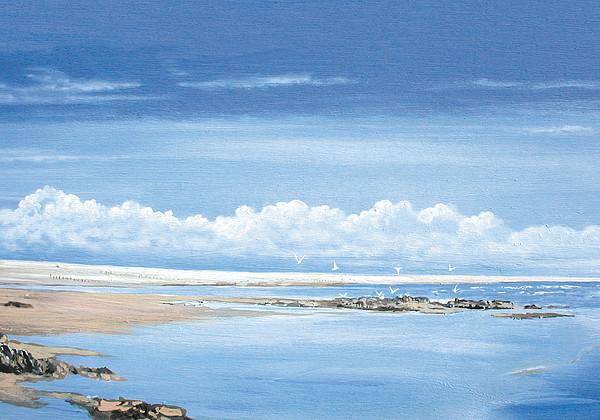 Winchelsea Gulls Print by Steve Crisp