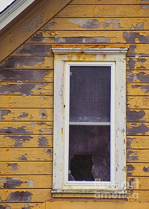 Window In Abandoned House Print by Jill Battaglia