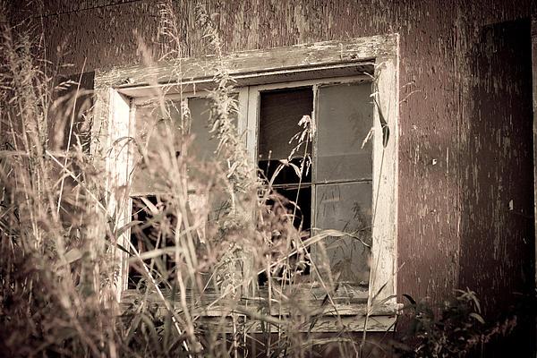 Window Of The Past Print by Randy Bayne