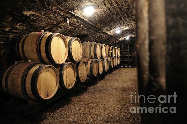 Wine Barrels In A Cellar. Cote D'or. Burgundy. France. Europe Print by Bernard Jaubert