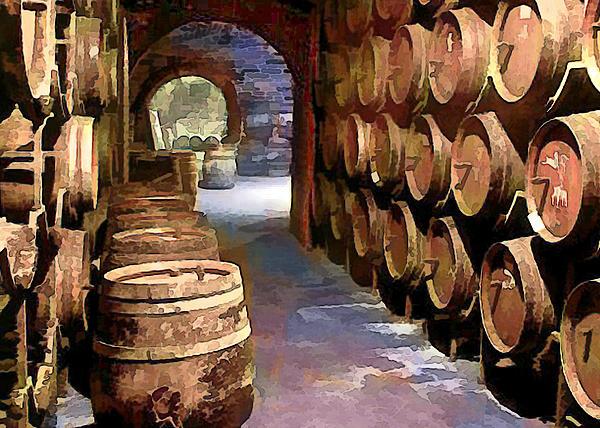 Wine Barrels In The Wine Cellar Print by Elaine Plesser