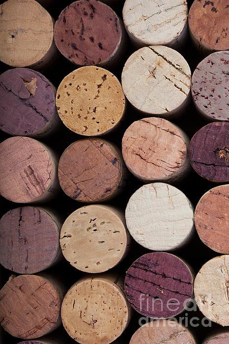 Wine Corks 1 Print by Jane Rix