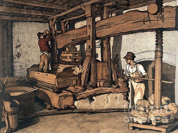 Wine Press 1890 Print by Padre Art