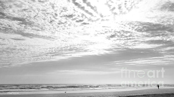 Winter Afternoon St Augustine Anastasia Island Florida Print by Michelle Wiarda