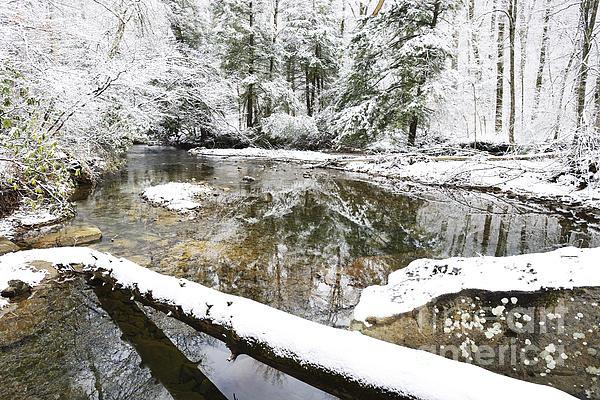 Winter Along Cranberry River Print by Thomas R Fletcher