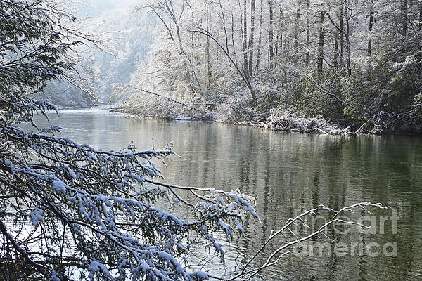 Winter Along Williams River Print by Thomas R Fletcher