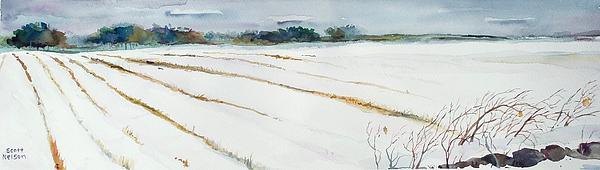 Winter Crop Print by Scott Nelson