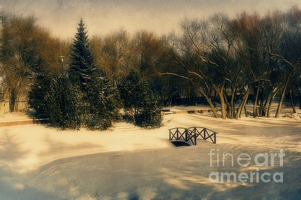 Winter Dream Print by Dorothy Pinder